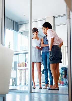 Buy stock photo Low angle view of three businesswomen reading and revising a document at the office