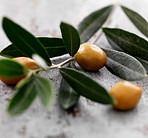 Olive branch on wood background