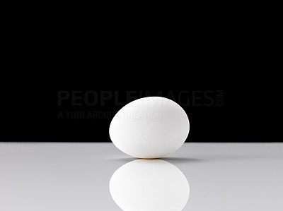 Buy stock photo One chicken egg on a shiny surface against black background