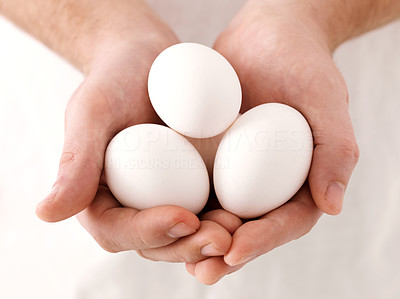 Buy stock photo Closeup of human hand holding white eggs