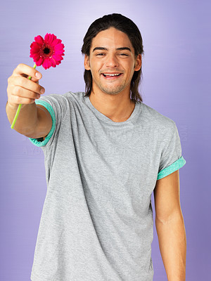 Buy stock photo Attractive man holding out daisy