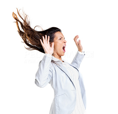 Buy stock photo Portrait of a young business woman fighting against wind on white background