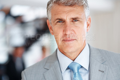 Buy stock photo Portrait of a senior male business executive looking confidently