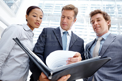 Buy stock photo An experienced business leader paging through documents as his colleagues look on