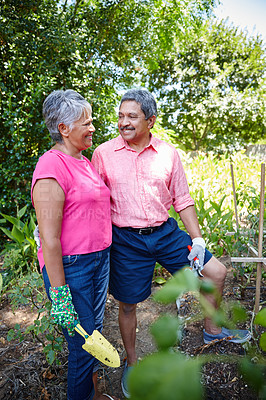 Buy stock photo Shot of a happy senior couple gardening together in their backyard