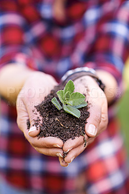Buy stock photo Cropped shot of hands holding a sprouting plant in soil