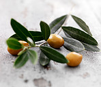 Branch with olives on wood background