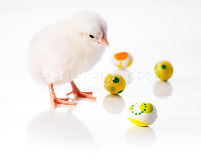 Buy stock photo Little chick with handmade easter eggs isolated on white background