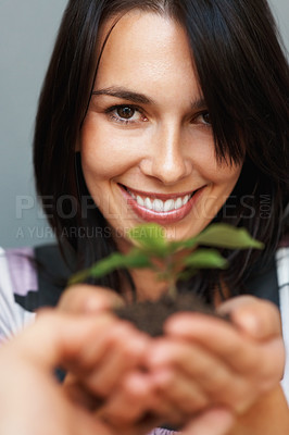 Buy stock photo Focus on woman smiling while presenting plant