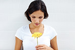 Goregous young lady holding a yellow flower on white