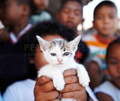 Buy stock photo Portrait of a group of rural Thai children with a kitten