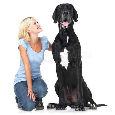Buy stock photo Pretty young woman crouching alongside an enormous great dane with a smile - isolated on white
