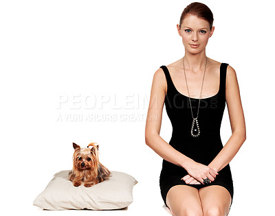 Buy stock photo Portrait of an elegant young lady sitting next to her dog