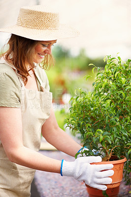 Buy stock photo Portrait of a happy young woman holding a potted plant at a greenhouse