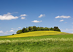 The countryside - beautiful blue sky and grass