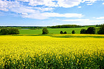 A photo landscape and countryside photo with extreme DOF (tilt/shift lens used)