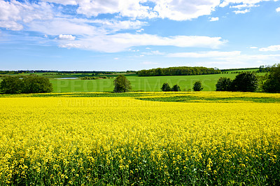 Buy stock photo A photo landscape and countryside photo with extreme DOF (tilt/shift lens used)