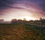 Misty sunrise over the farm