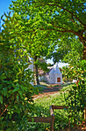 Picturesque farmhouse in the winelands