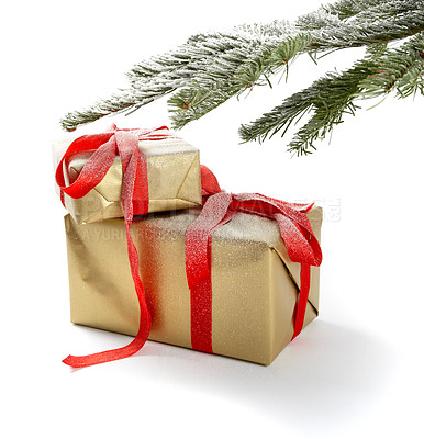 Buy stock photo Wrapped christmas presents with christmas tree branch in background, isolated on white - copyspace