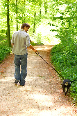 Buy stock photo Rear view of a young man taking his dog for a walk through the woods