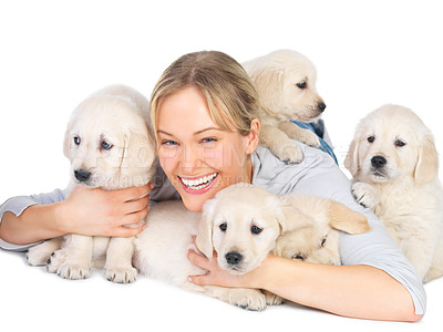 Buy stock photo Gorgeous young woman smiling while lying isolated on white with a litter of labrador puppies - portrait