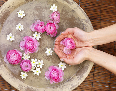 Buy stock photo Spa and wellness details - Preparing an aromatherapy session, flowers, water and oils.