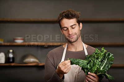 Buy stock photo A young man holding a bunch of spinach in a kitchen