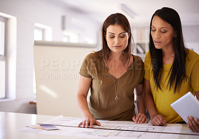 Buy stock photo Two female designers discussing the details of a blueprint