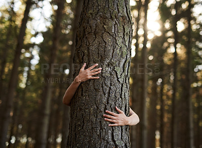 Buy stock photo Shot of an unidentifiable young woman hugging a tree in the forest