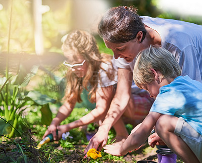 Buy stock photo Cropped shot of a mother gardening with her two little children outside