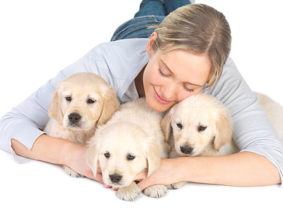 Buy stock photo Cute puppies and young girl hugging - Caucasian young female lying on floor with her pet dogs