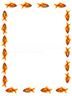 Buy stock photo Fish following each other in a line forming a frame - copyspace