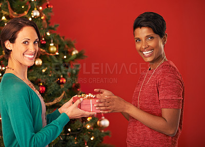 Buy stock photo Portrait of two young women exchanging gifts at Christmas