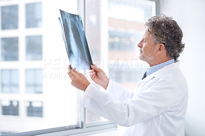 Buy stock photo Shot of a mature doctor examining an x ray in his office