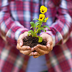 Planting a flower means believing in tomorrow
