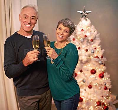 Buy stock photo Cropped portrait of a happy mature couple toasting each other on Christmas eve