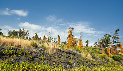 Buy stock photo Lava Landscape at Mouna Kea - the most active volcano in Hawaii, Big Island, Hawaii, USA