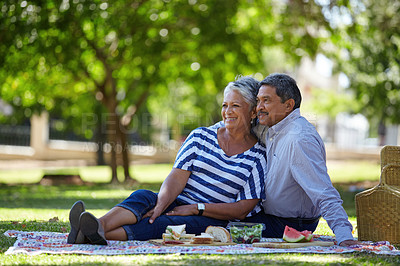 Buy stock photo Shot of a loving senior couple enjoying a leisurely picnic in the park