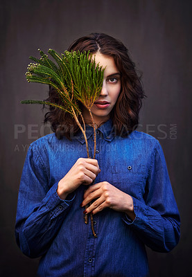 Buy stock photo Portrait of a young woman holding an evergreen branch in front of her face