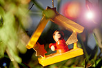Toys and trinkets for your Christmas tree