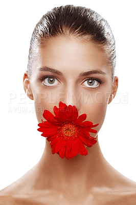 Buy stock photo Studio portrait of a beautiful woman with a flower in her mouth