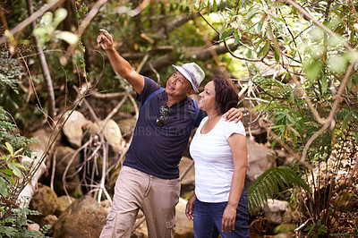 Buy stock photo Cropped shot of a mature man showing his wife something while hiking in a forest