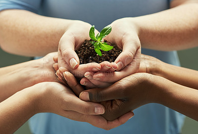 Buy stock photo Shot of a group of hands holding a plant growing out of soil
