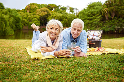 Buy stock photo Portrait of a senior couple enjoying a picnic in a park