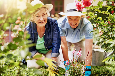 Buy stock photo Portrait of an affectionate senior couple gardening at home