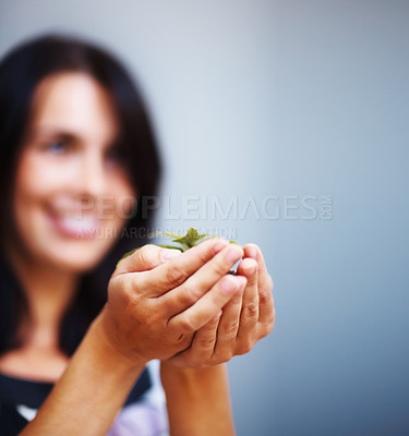 Buy stock photo Closeup of woman's hands holding plant on colored background