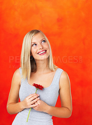 Buy stock photo Woman holding flower and looking up on orange background
