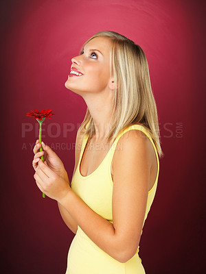 Buy stock photo Side view of pretty blonde holding daisy and looking up