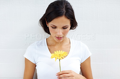 Buy stock photo Portrait of goregous young lady holding a yellow flower isolated on white background